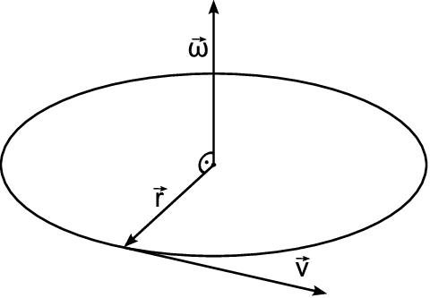Angular velocity and curl operator